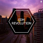 EDM Revolution by Various Artists