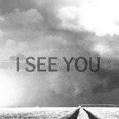 I See You by Ganga (Hindi)