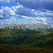 42 Track Therapy Through Sounds von Massage Therapy Music