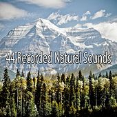 44 Recorded Natural Sounds von Massage Therapy Music