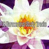30 Harmonious Study Tracks by Classical Study Music (1)