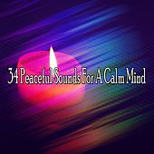 34 Peaceful Sounds For A Calm Mind von Massage Therapy Music