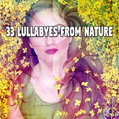 33 Lullabyes From Nature von Rockabye Lullaby