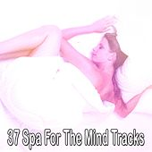 37 Spa For The Mind Tracks von Best Relaxing SPA Music