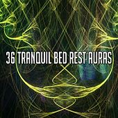 36 Tranquil Bed Rest Auras by Ocean Sounds Collection (1)
