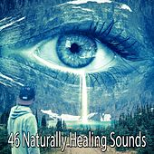 46 Naturally Healing Sounds de Nature Sounds Artists