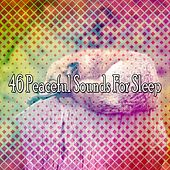 46 Peaceful Sounds For Sleep by Relaxing Spa Music