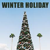 Winter Holiday de Various Artists