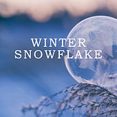 Winter Snowflake de Various Artists