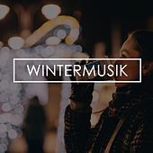 Wintermusik de Various Artists