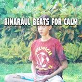 Binaraul Beats For Calm by Binaural Beats Brainwave Entrainment