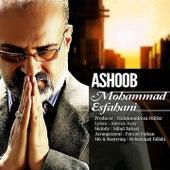 Ashoob by Mohammad Esfahani
