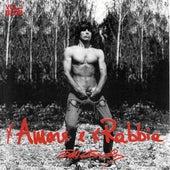 X Amore E X Rabbia by Don Backy