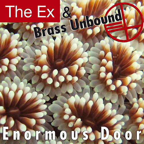 Enormous Door by The Ex