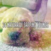 34 Naturally Sapping Sounds by Deep Sleep Music Academy