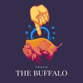 Ulrich de Touch the Buffalo
