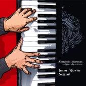 Sombras blancas von Juan María Solare