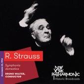 R. Strauss: Symphonia domestica von New York Philharmonic