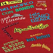 14 Exitos Vol. 2 by Various Artists