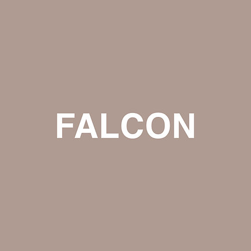 Falcon by Jaden Smith