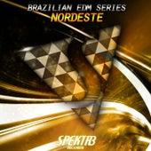 Brazilian EDM Series: Nordeste by Various Artists