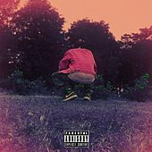 Somewhere in the Garden by DC D-Nice