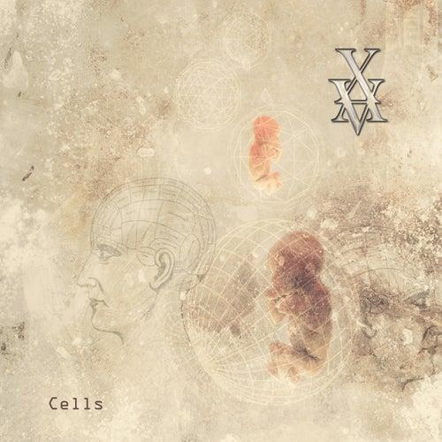 Cells by Xavier Boscher