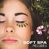 Soft Spa Melodies by Spa Zen