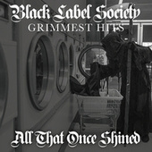 All That Once Shined de Black Label Society