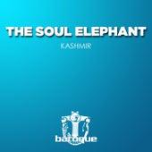 Kashmir von The Soul Elephant