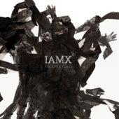 Volatile Times by IAMX