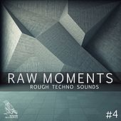 Raw Moments, Vol. 4 - Rough Techno Sounds de Various Artists