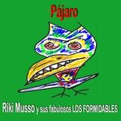 Pájaro de Riki Musso