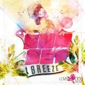 Sunset Breeze - Ibiza Beach Lounge von Various Artists