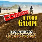 Corridos Todo Galope by Los Nuevos Cadetes