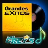 Grandes Exitos by Los Grey's