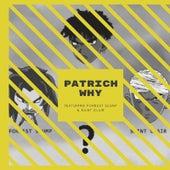 Why (feat. Forrest Slump & SAINT CLAIR) by Pat Rich
