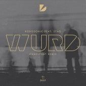WURD (CamelPhat Remix) von Robosonic