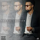 The Collection by Aspen Martin