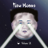 New Moons Vol. IX von Various Artists