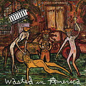 Wasted In American de Love/Hate