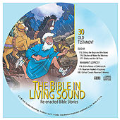 30. Elisha/Naaman's Leprosy by The Bible in Living Sound