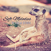 Soft Melodies to Calm Down by Relaxing Spa Music
