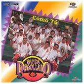 Como Tú by Banda Degollado