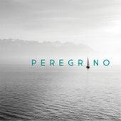 Peregrino de Portavoz