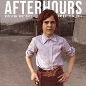 Foto Di Pura Gioia - Antologia 1987 - 2017 di Afterhours