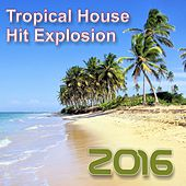 Hit Explosion: Tropical House 2016 von Various Artists