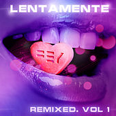 Lentamente Remixed, Vol. 1 de Fey