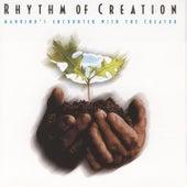 Rhythm Of Creation by Studio Musicians