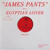 Cosmic Rapp (Egyptian Lover Remix) 12